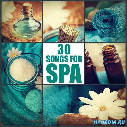Essence of Life 30 Songs for Spa (2014)