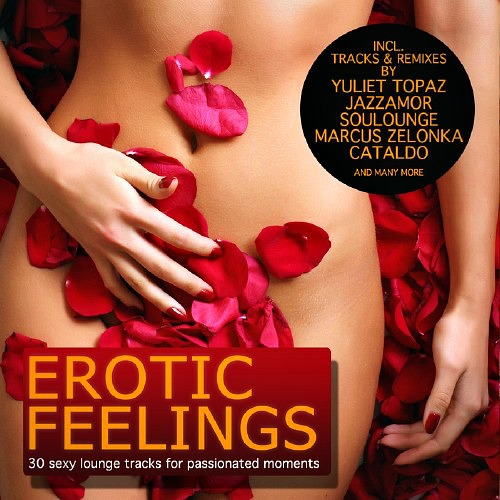 Erotic Feelings: 30 Sexy Lounge Tracks For Passionated Moments (2012)