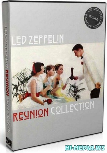 Led Zeppelin - Reunion Collection (1985-1995) (2007) DVDRip