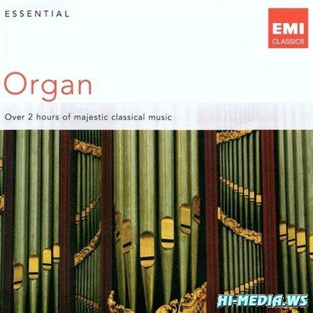 Essential Organ (2011)