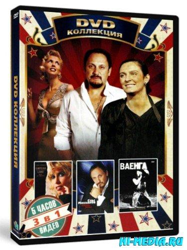 DVD Коллекция: А.Свиридова, С. Михайлов, Е. Ваенга (2013) DVDRip