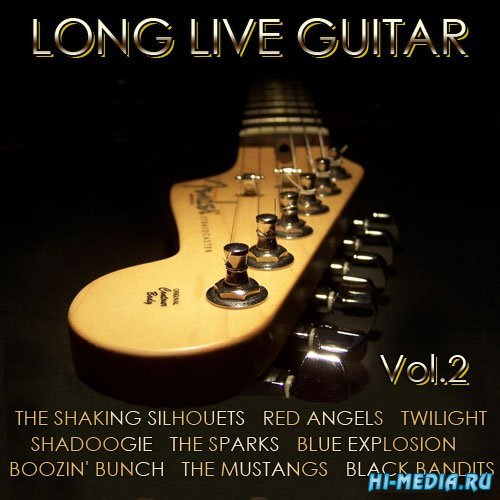 Long Love Guitar Vol.2 (2015)