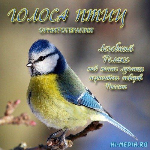 Звуки природы: Голоса птиц - Лечебный релакс (2015)