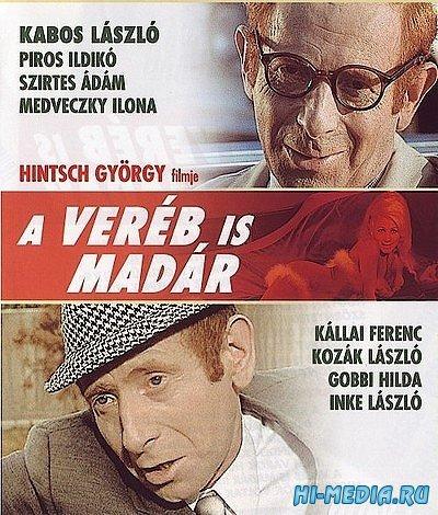 Воробей тоже птица / A vereb is madar (1969) DVDRip