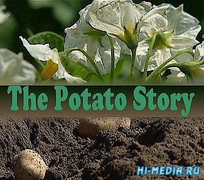 История картофеля / The Potato Story (2008) SATRip