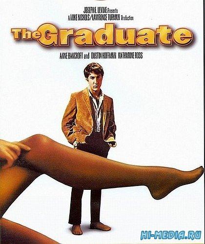 Выпускник / The Graduate (1967) DVDRip