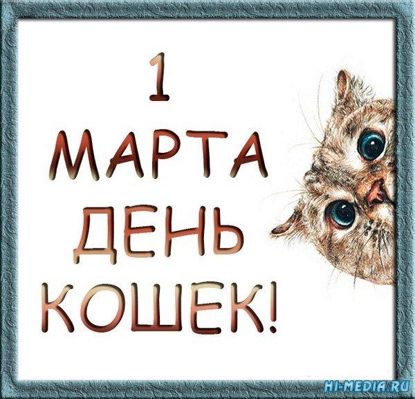 1 марта - день кошек (Музыкальная flash-открытка)