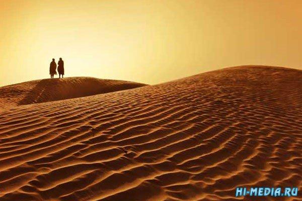 Удивительная пустыня Сахара