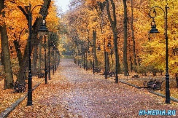 Осень... (Музыкальная открытка)