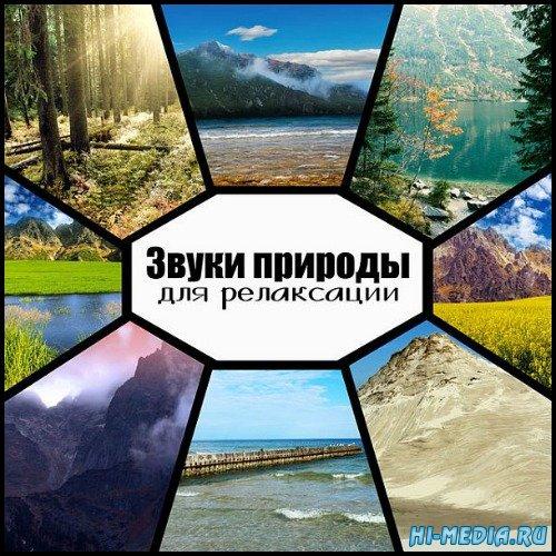 VA - Звуки природы для релаксации (2020) Mp3