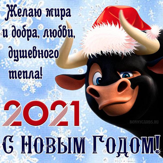 С Новым, 2021, годом!