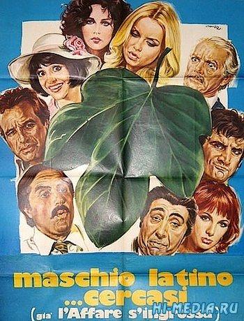 Разыскивается латинский мачо / Maschio latino cercasi (1977) SATRip